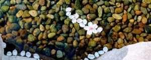 Pebbles in a stream in Matsumoto