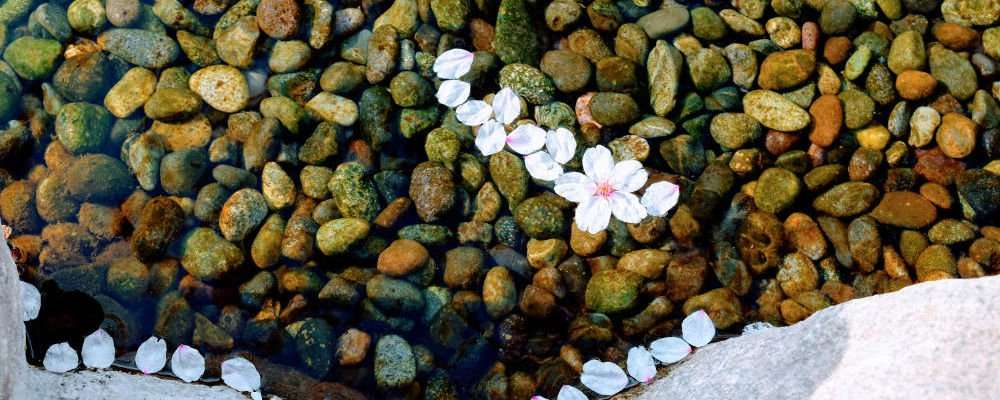 Pebbles in a stream in Matsumoto