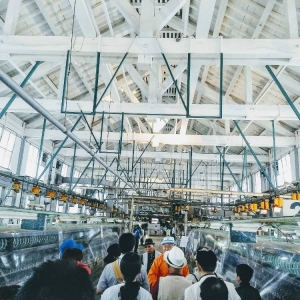 Tomioka Silk Mill