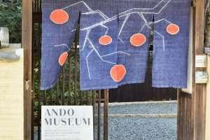 The Ando Museum