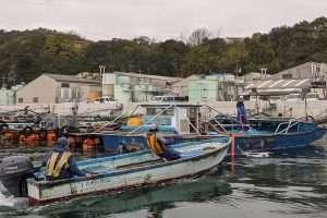 Seaweed Boats Naoshima