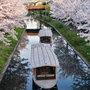 sake boat kyoto