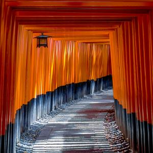 torii gate kyoto
